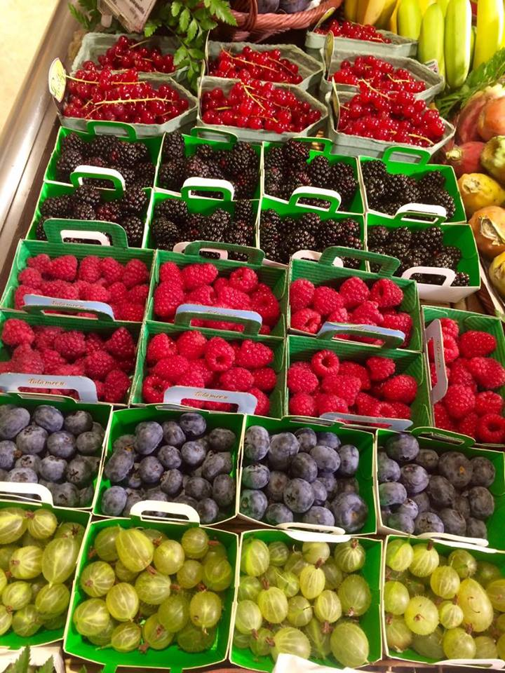 frenchberries